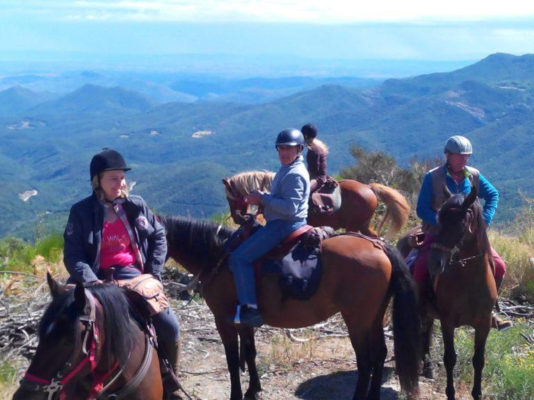 Randonnée équestre tout public au sommet des Pyrénées