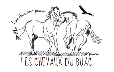 Les Chevaux du Buac