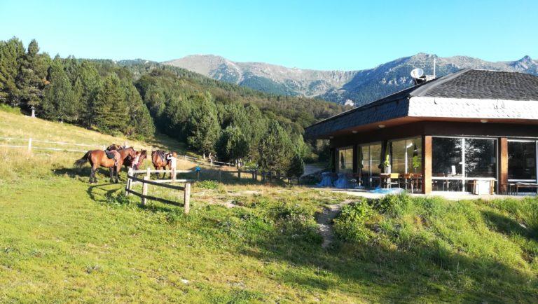 Centre de randonnées équestres - les chevaux du buac