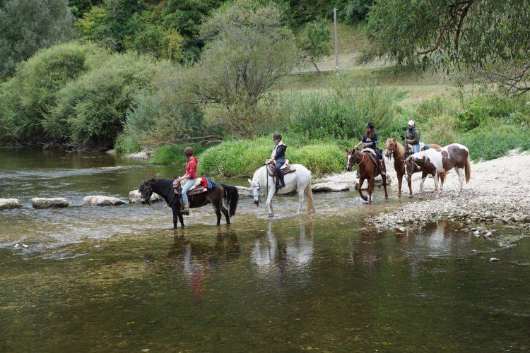 Traversée d'une rivière avec les chevaux